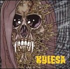 KYLESA No Ending / A 100° Heat Index album cover