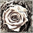 .LEAVES Kontraste album cover