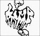 LIMP BIZKIT Mental Aquaducts album cover