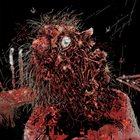 LYMPHATIC PHLEGM Catasexual Urge Motivation / Lymphatic Phlegm album cover