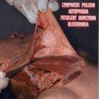 LYMPHATIC PHLEGM Lymphatic Phlegm / Autophagia / Feculent Goretomb / Ulcer album cover