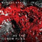 MAGGOT BRAIN As The Crow Flies album cover
