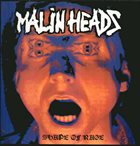 MALINHEADS Berlin Gewidmet ✝ 3. Okt' 90 / Shape Of Rage album cover