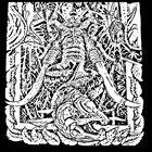 MAMMOTH SALMON Demo: I album cover