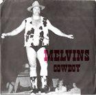 MELVINS Melvins / Plainfield album cover