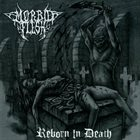 MORBID FLESH Reborn In Death album cover