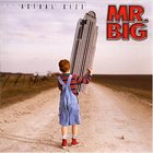 MR. BIG Actual Size album cover