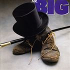 MR. BIG Mr. Big album cover