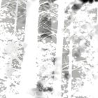 OAKS OF BETHEL Disembodied IV album cover