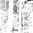 OAKS OF BETHEL Disembodied (Suite) album cover