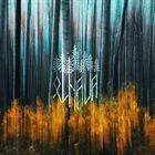 OLHAVA Olhava album cover