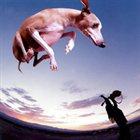 PAUL GILBERT Flying Dog album cover