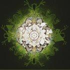 PHYLLOMEDUSA Bi-Ram-Bo Sapo (Vocal Only) album cover