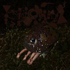 PHYLLOMEDUSA Death By Corpulence album cover