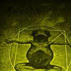 PHYLLOMEDUSA Gill Ciliation album cover