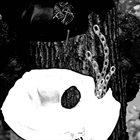 PHYLLOMEDUSA Gimpburl album cover