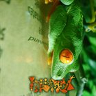 PHYLLOMEDUSA Greenhand album cover