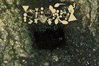 PHYLLOMEDUSA Morass Marks The Vertebrate album cover