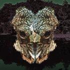 PHYLLOMEDUSA Spiracle Sinistrally Mask Menguled album cover