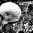 PHYLLOMEDUSA The Foam Nest (2010) album cover