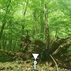PHYLLOMEDUSA The Gurrem album cover