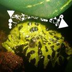 PHYLLOMEDUSA The Hunchback album cover