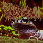 PHYLLOMEDUSA Unriled Selection (The Moustache Of Emei) album cover