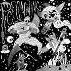 PIGEONWING Rash album cover