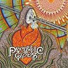 PLASTIC GODS Plastic Gods album cover