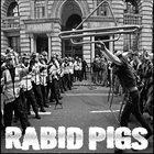 RABID PIGS Grin And Bear It / Rabid Pigs album cover