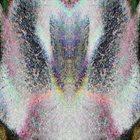 RADIANT BEINGS OF LIGHT Radiant Beings Of Light album cover