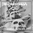 RADIOSKUGGA En Estetisk Krigsförklaring album cover
