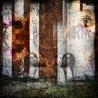 RANDOM MULLET Capturing Moments album cover