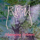 RDETIED Changing Colours album cover
