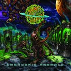 RINGS OF SATURN Embryonic Anomaly Album Cover