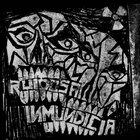 RUIDOSA INMUNDICIA Amazing Madness - Japan Tour album cover