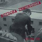 RUIDOSA INMUNDICIA De Una Vez album cover
