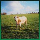 RUINS Ruinzhatova - Close To The RH album cover