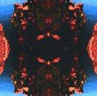 RUINS Tohjinbo (with Derek Bailey) album cover