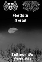 SATANIC FOREST Fullmoon on North Sky album cover