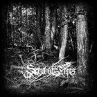 SEA OF TREES Aokigahara album cover