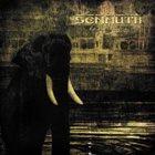 SENMUTH Rain Eclipse album cover