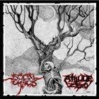 SOCIAL CHAOS Social Chaos / Atitude Zero album cover