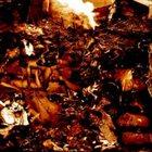 SPERMSWAMP 4 Way-Split album cover