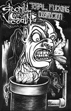SPOONFUL OF VICODIN Spoonful Of Vicodin / Total Fucking Destruction album cover
