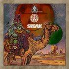 STEAK DesertFest Vol. 3 album cover