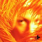 STONE TEMPLE PILOTS Shangri-La Dee Da album cover