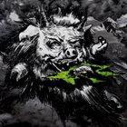 THY GRAVE Talvisaatana album cover