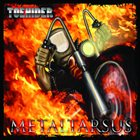 TOEHIDER Metaltarsus album cover