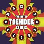 TOEHIDER The Best Of 12 In 12 album cover